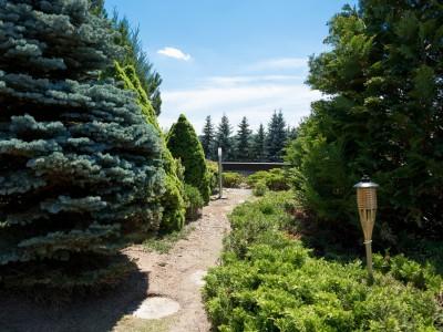zelená terasa